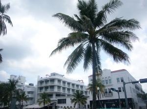 house-FL 066