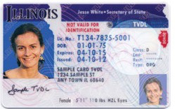 temporary-drivers-license1_0